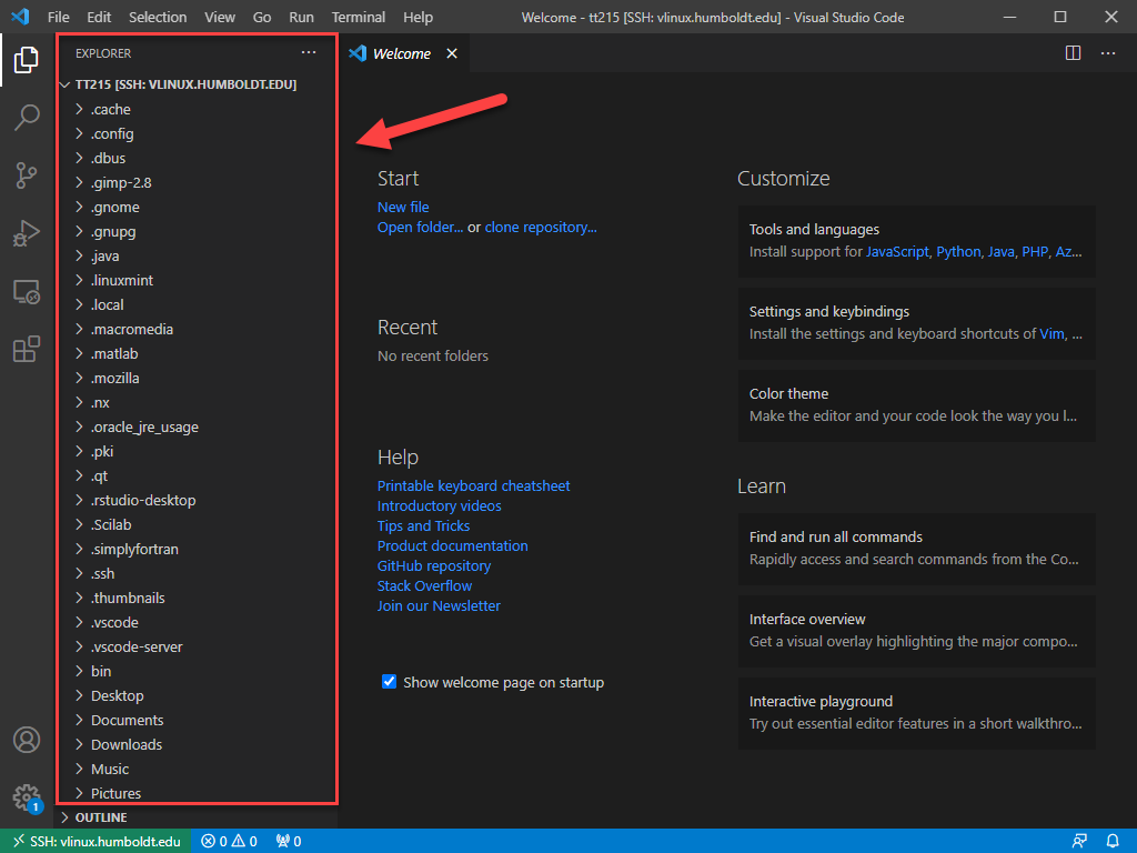 VS Code -  Explorer listing vLinux directories and files