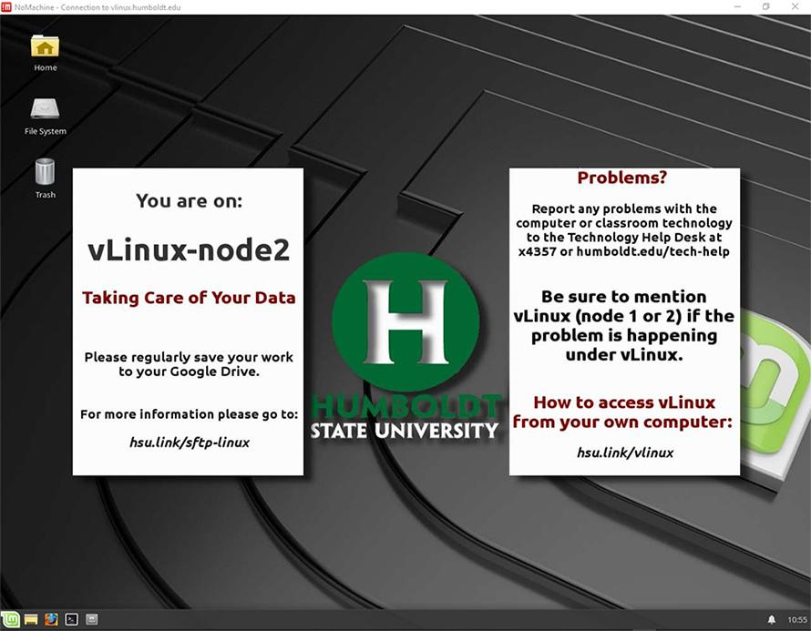 VLinux window